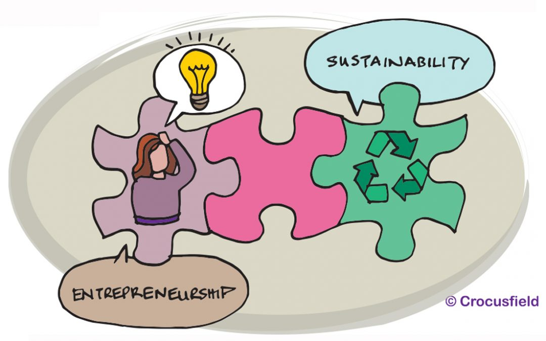 Networking Summary: Bridging Entrepreneurship & Sustainability, 24 June 2021